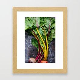 Rainbow Beets & Greens Framed Art Print