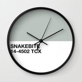 snakebite Wall Clock