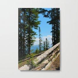 Crested Butte, Colorado Metal Print