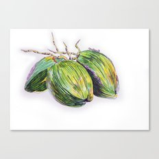 Island life coconut Canvas Print