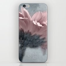 ICY GERBERA iPhone & iPod Skin