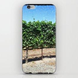 Santa Barbara Vineyard iPhone Skin