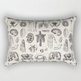 Human Anatomy Rectangular Pillow