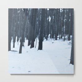 Snowforest Metal Print