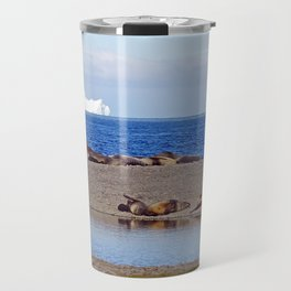 Fur seals with iceberg in the distance Travel Mug