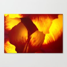 Abstract - Tulip Canvas Print