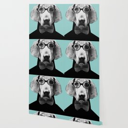 Mr Italian Bloodhound the Hipster Wallpaper