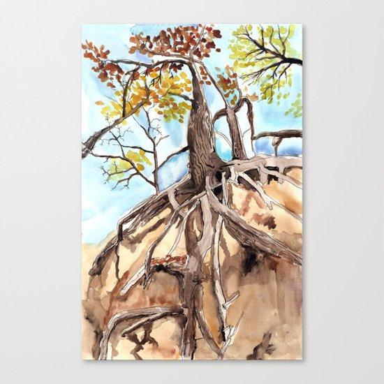 road cut gold Canvas Print