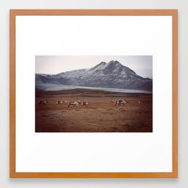 Roaming Framed Art Print