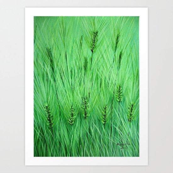 Green wheat Art Print