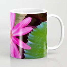 Pink Waterlily Flower Photo 6 Coffee Mug