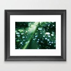 Moisteen Framed Art Print