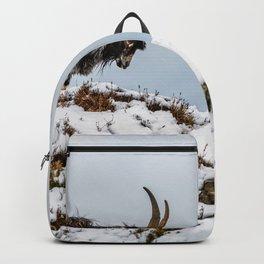 Welsh Mountain Goats Backpack