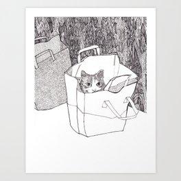 In the bag Art Print