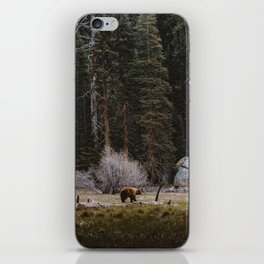 BEAR IN THE FOREST iPhone Skin