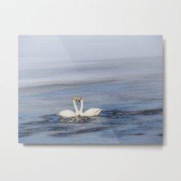 swans love of life Metal Print