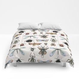 Entomology Comforters