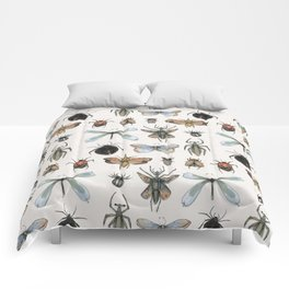 Entomology Comforters
