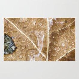 Raindrops on the leaf Rug