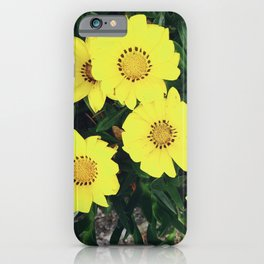 Wildflowers in Korea iPhone Case