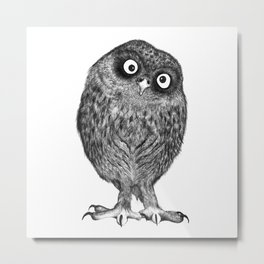 Owl Nr.4 Metal Print