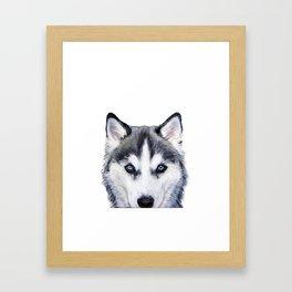Siberian Husky original painting by Miart Framed Art Print