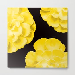 Large Yellow Succulent On Black Background #decor #society6 #buyart Metal Print