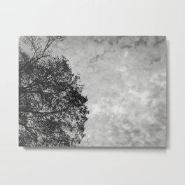 004 | austin Metal Print