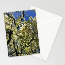 Looking Up At Blue Sky Through Blooming Branches Stationery Cards