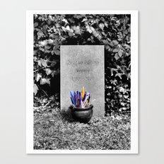 The Grave of Douglas Adams Canvas Print