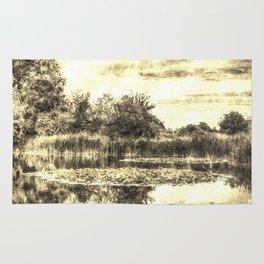 Liliy Pond Vintage Rug
