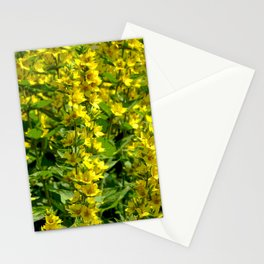 Goldfelberich Stationery Cards