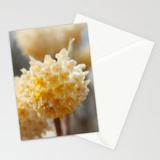 Bells of Spring Stationery Cards