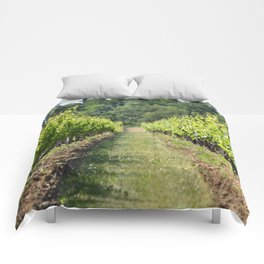 Vineyard Path Comforters