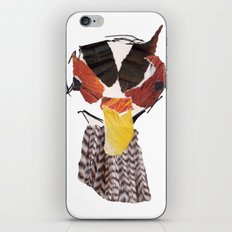 Pheasant iPhone & iPod Skin