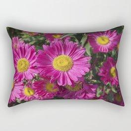 Summer Asters 4636 Rectangular Pillow