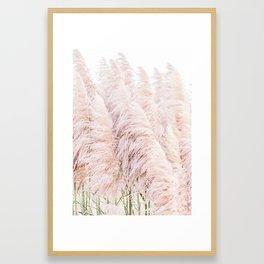 Pink Pampas Framed Art Print