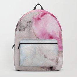 Integration 1 Backpack