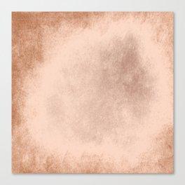 Brown grunge texture Canvas Print