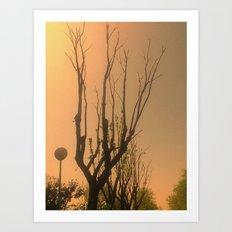 Spiritual trees Art Print
