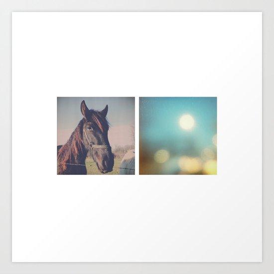the horse diaries Art Print