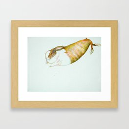 Rabbit Radish Framed Art Print