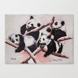 Lazy days Panda's by Machale O'Neill Canvas Print