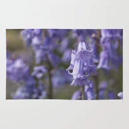 The Bluebell Patch Rug