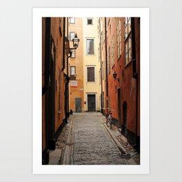 Stockholm Alley Art Print