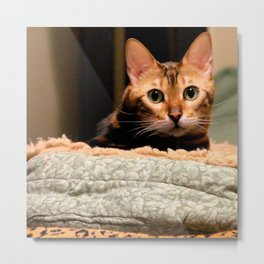 Did You Knock? Metal Print