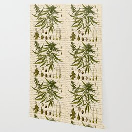 Marijuana Cannabis Botanical on Antique Journal Page Wallpaper