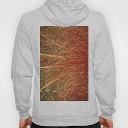 Linear Abstract2-Warm Colors Hoody
