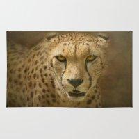 cheetah Area & Throw Rugs featuring Cheetah by Pauline Fowler ( Polly470 )