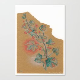 Plante 1 - 211216 Canvas Print
